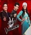 The Voice Episode 25